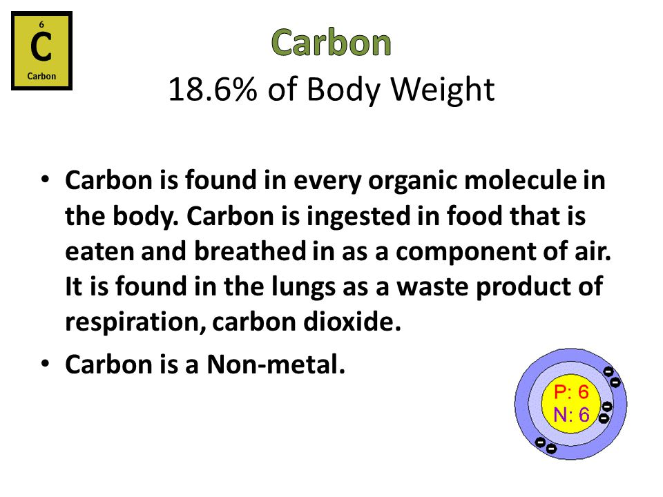 Carbon 18.6% of Body Weight
