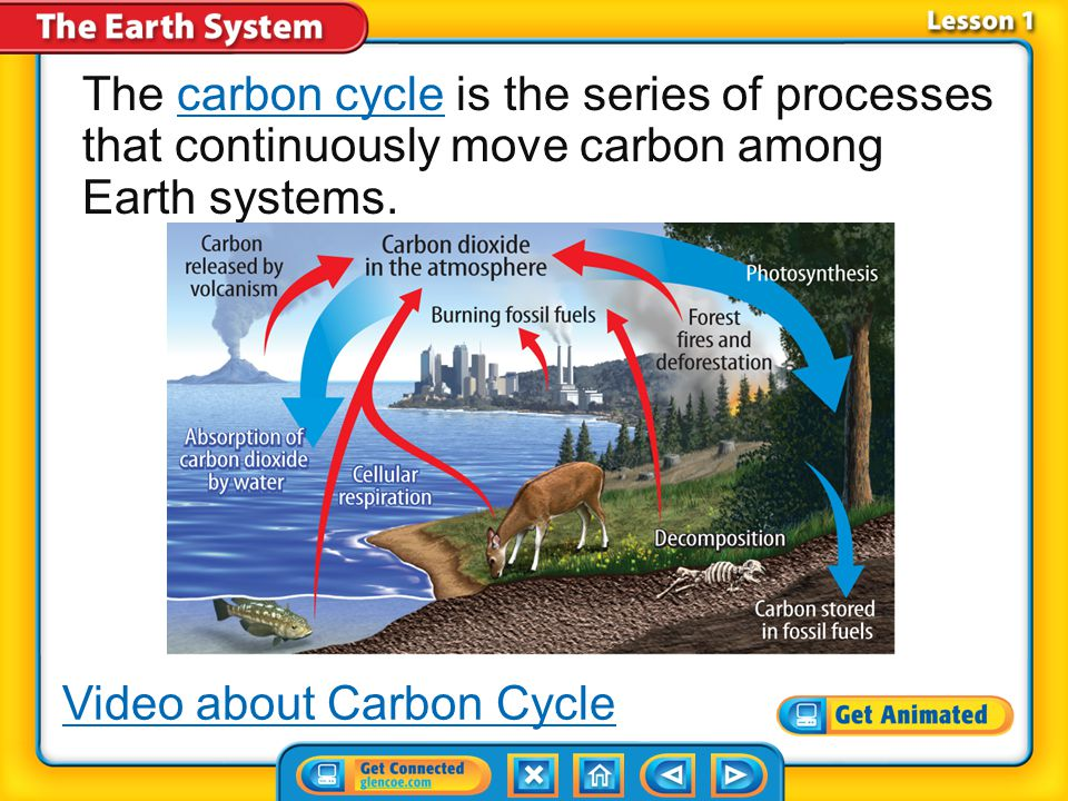 Video about Carbon Cycle