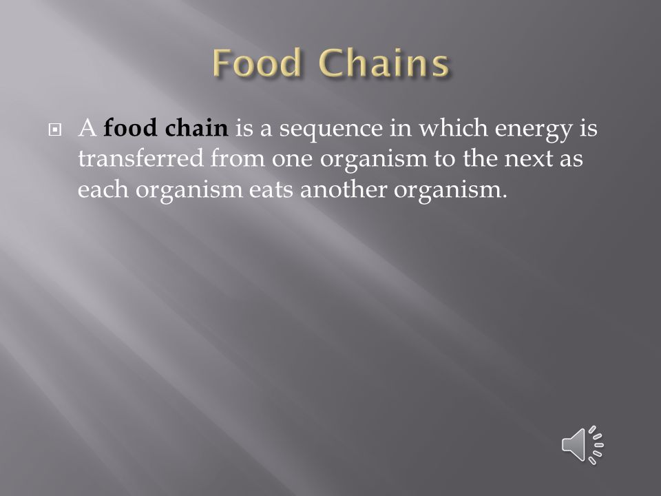 Food Chains A food chain is a sequence in which energy is transferred from one organism to the next as each organism eats another organism.