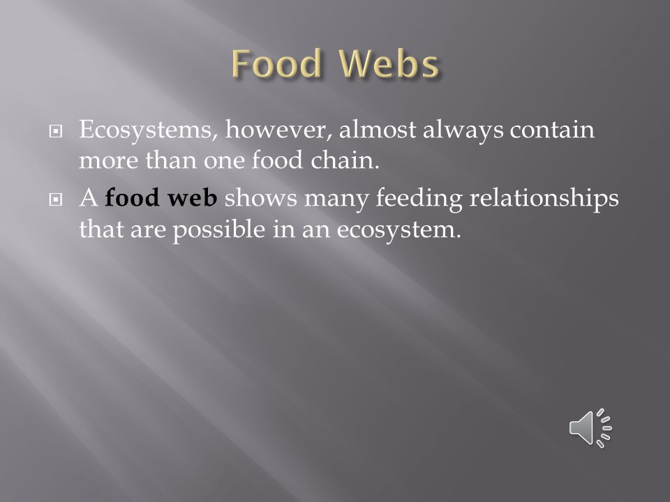 Food Webs Ecosystems, however, almost always contain more than one food chain.