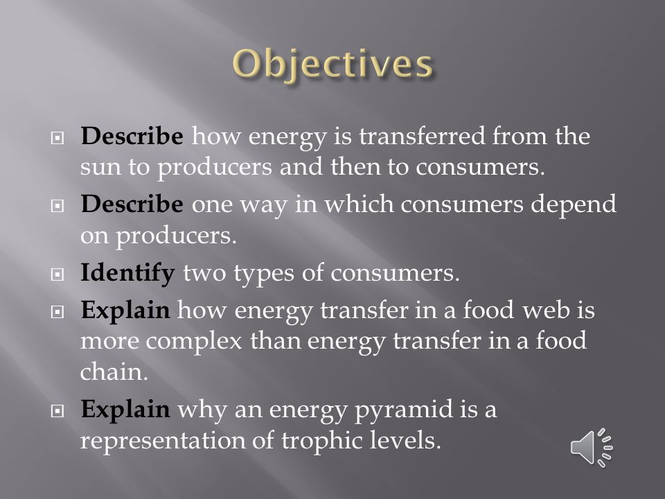 Objectives Describe how energy is transferred from the sun to producers and then to consumers.
