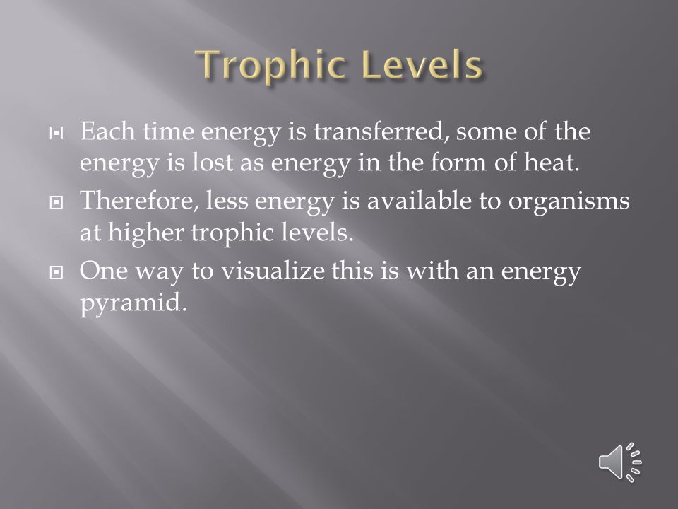 Trophic Levels Each time energy is transferred, some of the energy is lost as energy in the form of heat.
