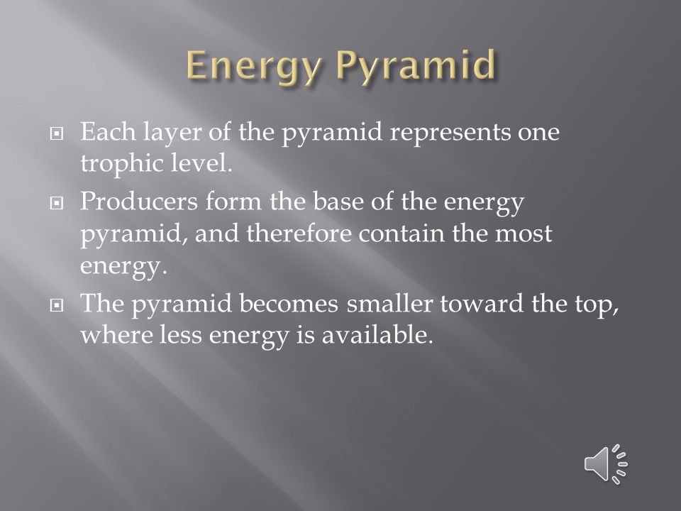 Energy Pyramid Each layer of the pyramid represents one trophic level.
