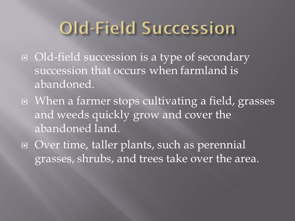 Old-Field Succession Old-field succession is a type of secondary succession that occurs when farmland is abandoned.