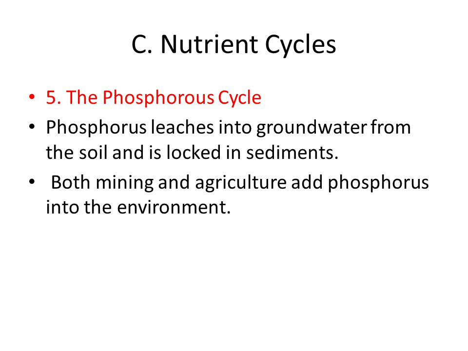 C. Nutrient Cycles 5. The Phosphorous Cycle