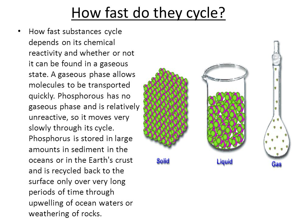How fast do they cycle