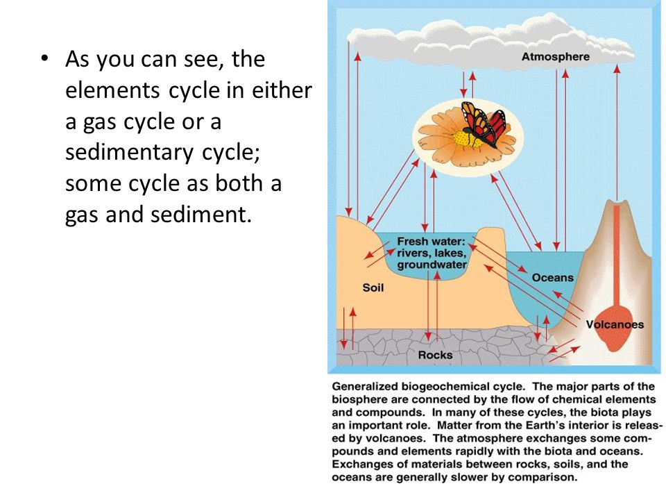 As you can see, the elements cycle in either a gas cycle or a sedimentary cycle; some cycle as both a gas and sediment.