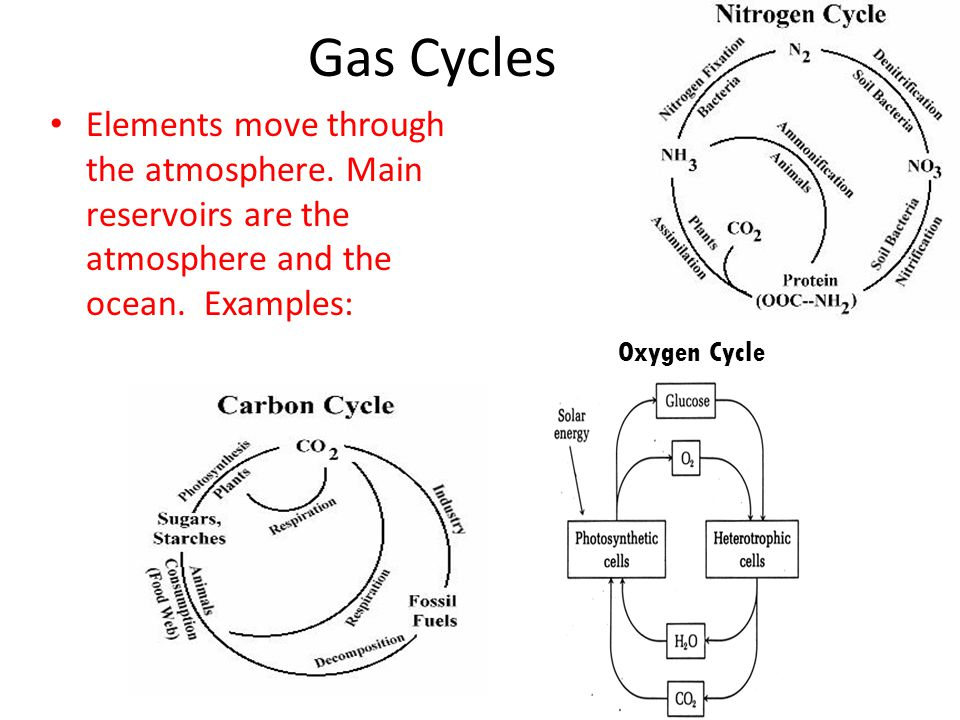 Gas Cycles Elements move through the atmosphere. Main reservoirs are the atmosphere and the ocean. Examples: