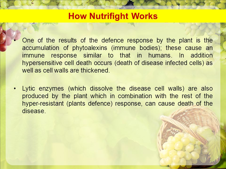 How Nutrifight Works