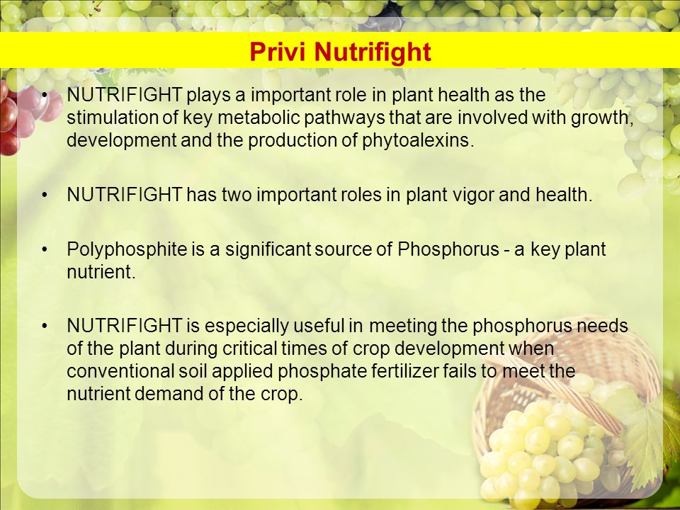 Privi Nutrifight