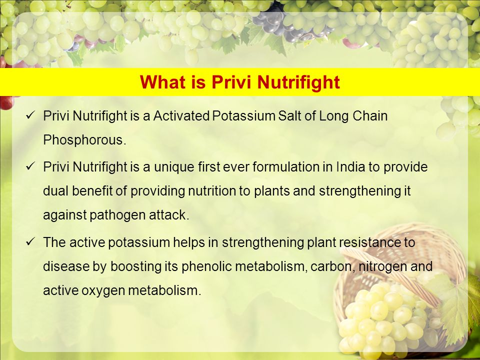 What is Privi Nutrifight