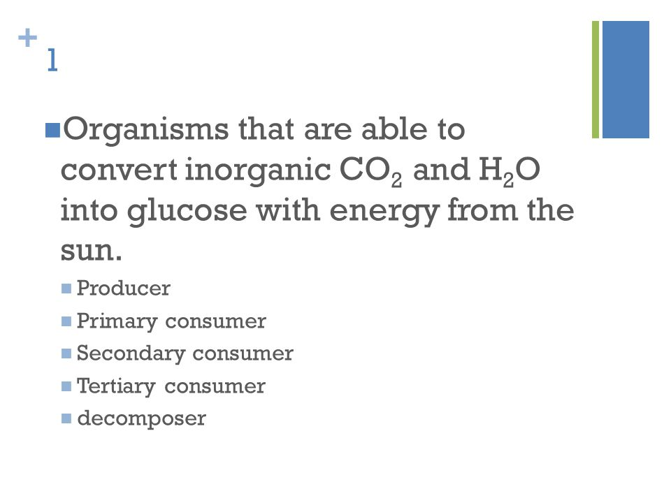 1 Organisms that are able to convert inorganic CO2 and H2O into glucose with energy from the sun.