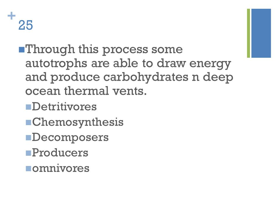 25 Through this process some autotrophs are able to draw energy and produce carbohydrates n deep ocean thermal vents.