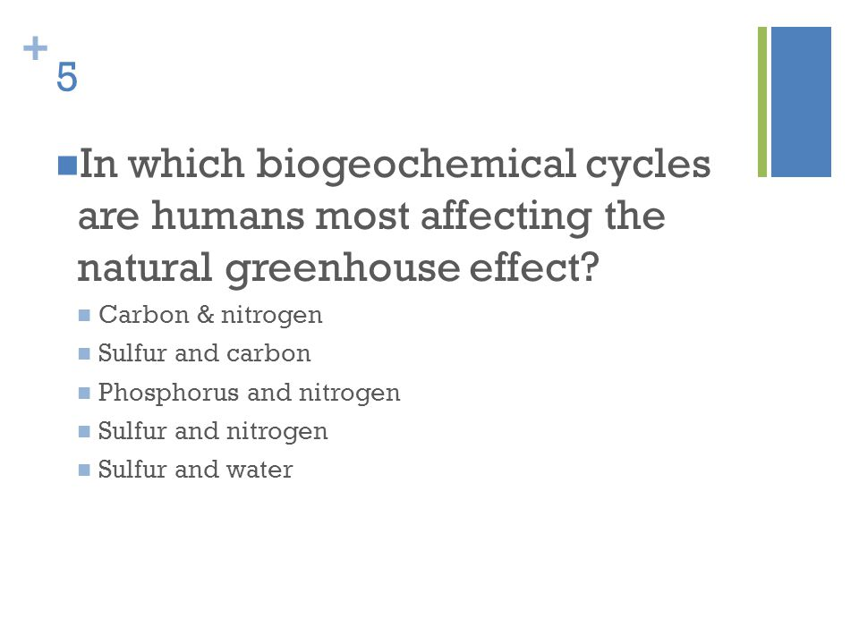 5 In which biogeochemical cycles are humans most affecting the natural greenhouse effect Carbon & nitrogen.