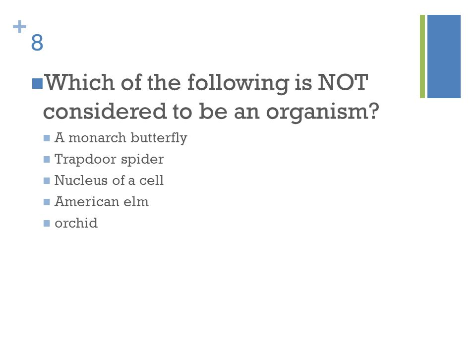 Which of the following is NOT considered to be an organism