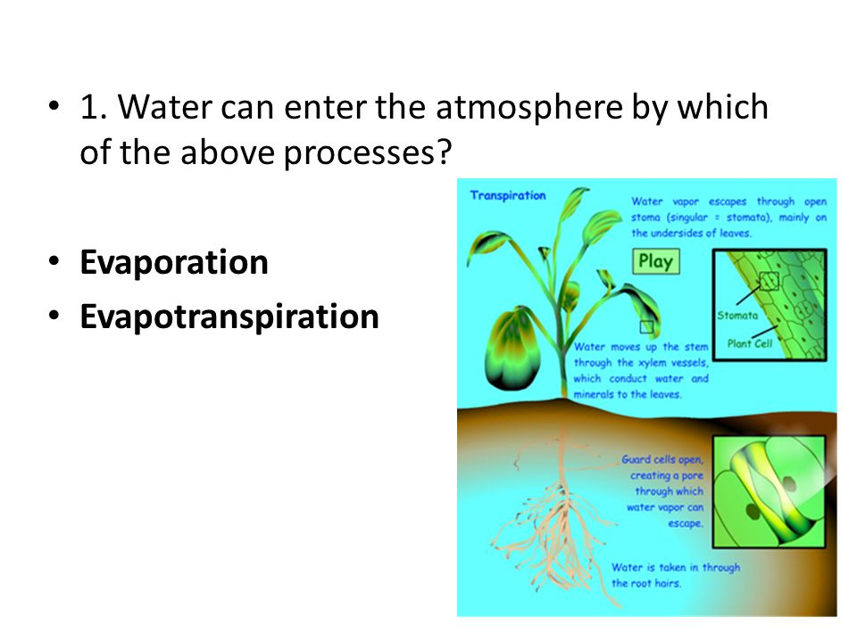 1. Water can enter the atmosphere by which of the above processes