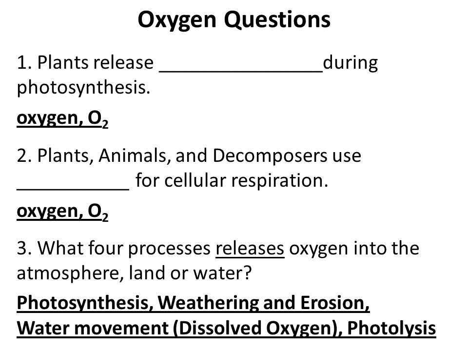 Oxygen Questions 1. Plants release ________________during photosynthesis. oxygen, O2.