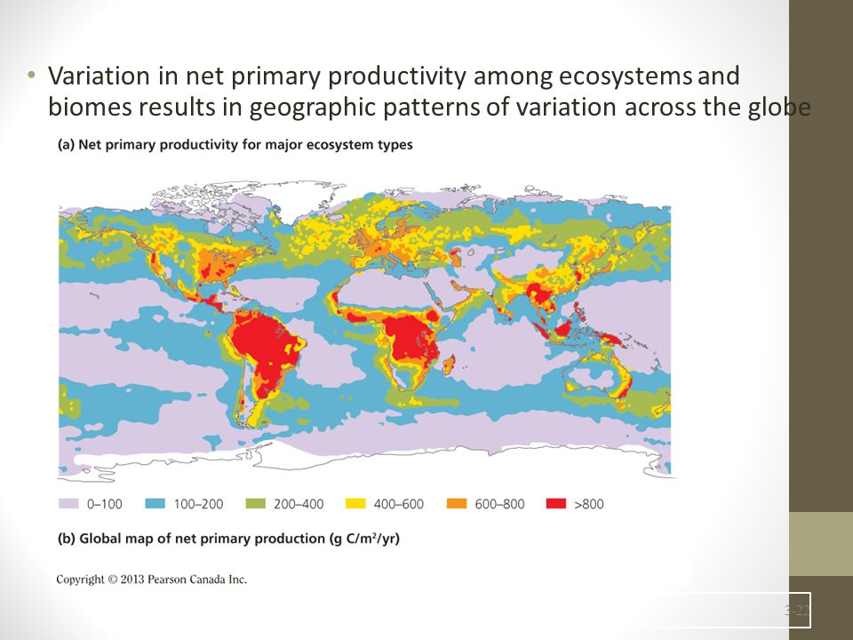 Variation in net primary productivity among ecosystems and biomes results in geographic patterns of variation across the globe