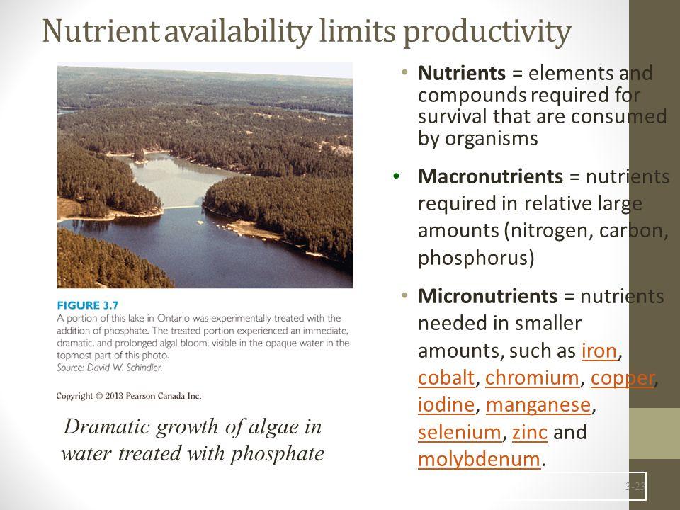 Nutrient availability limits productivity