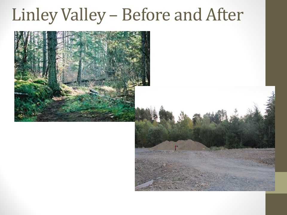 Linley Valley – Before and After