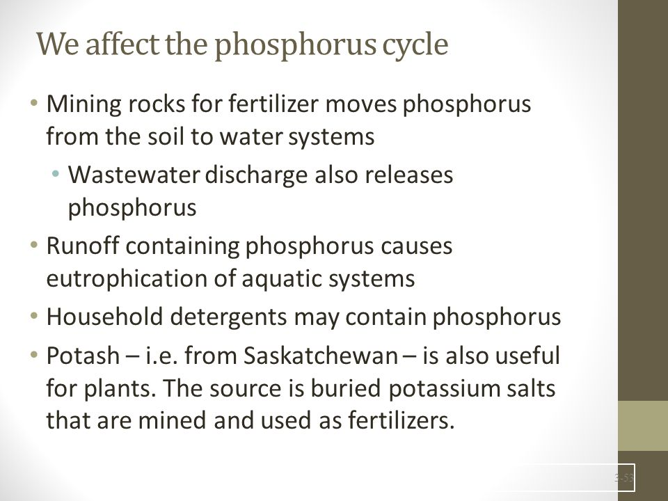 We affect the phosphorus cycle