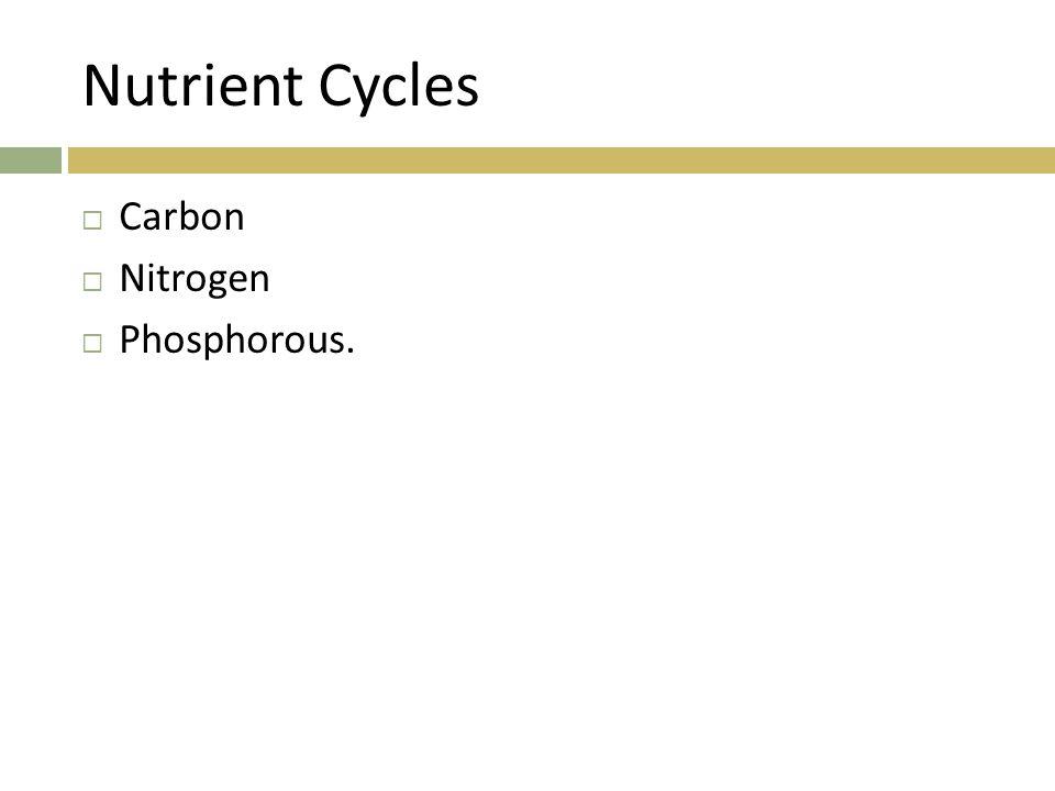 Nutrient Cycles Carbon Nitrogen Phosphorous.