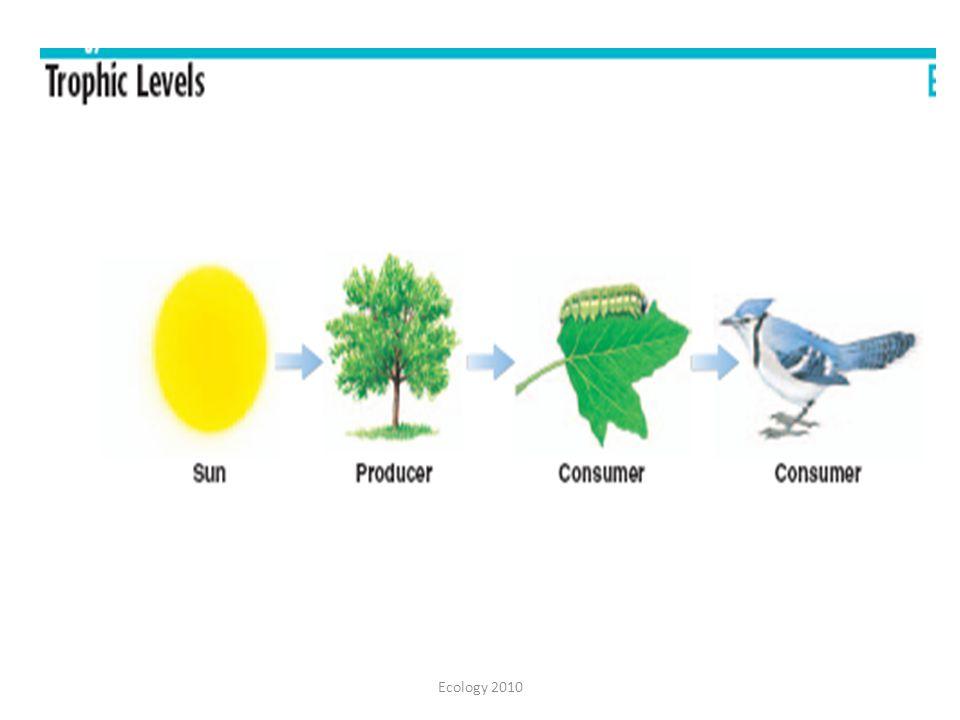 Ecology 2010