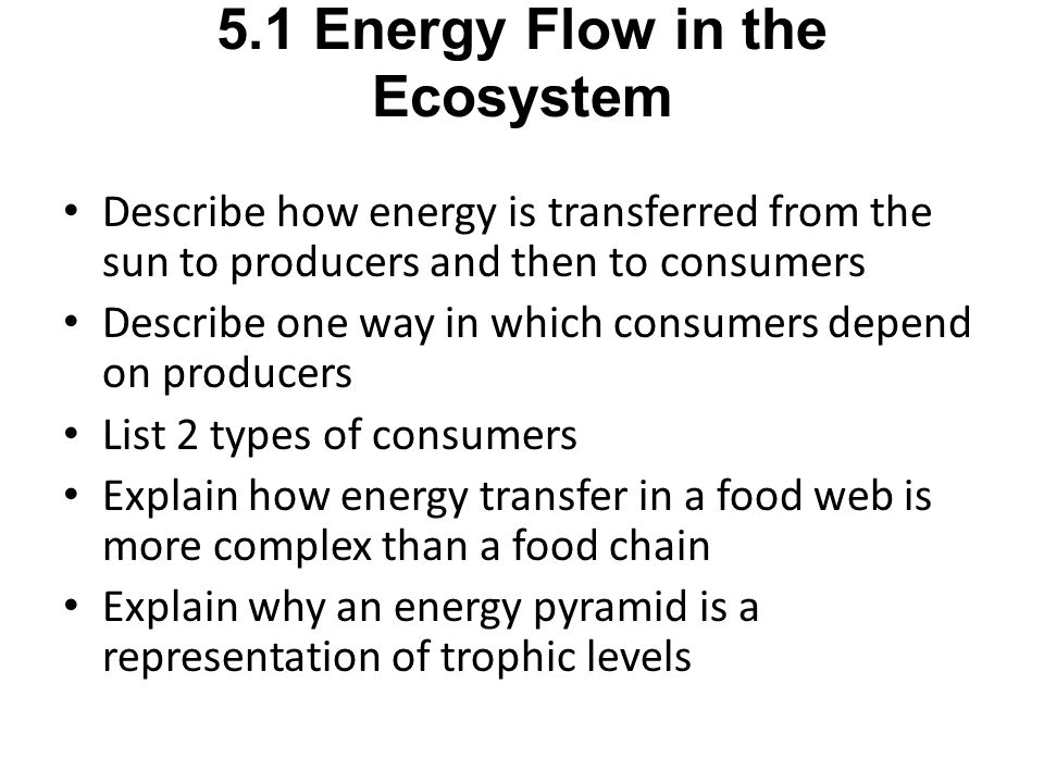 5.1 Energy Flow in the Ecosystem