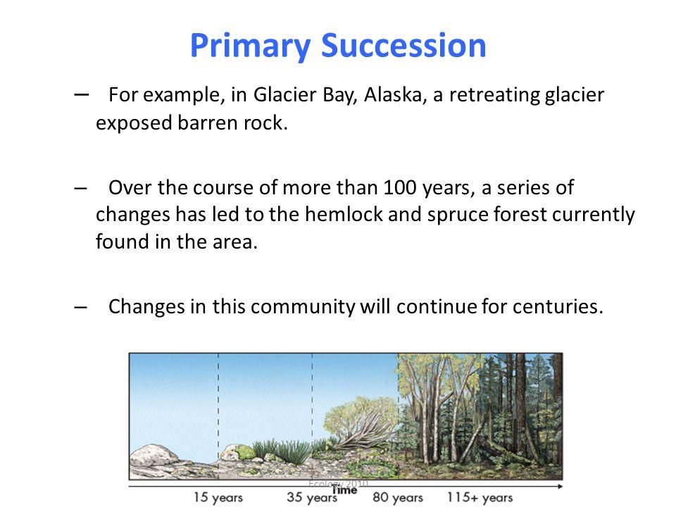 Primary Succession For example, in Glacier Bay, Alaska, a retreating glacier exposed barren rock.