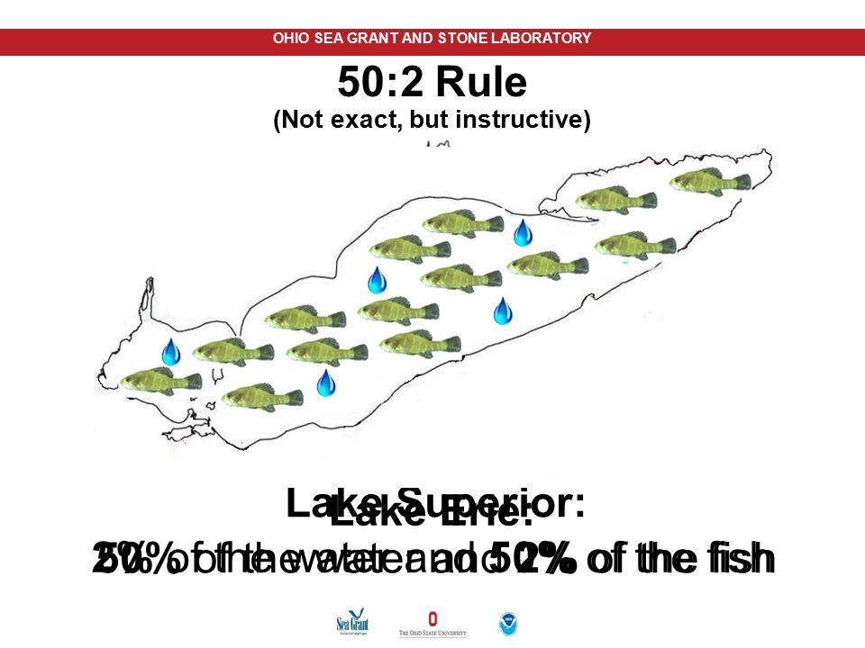 50:2 Rule (Not exact, but instructive)