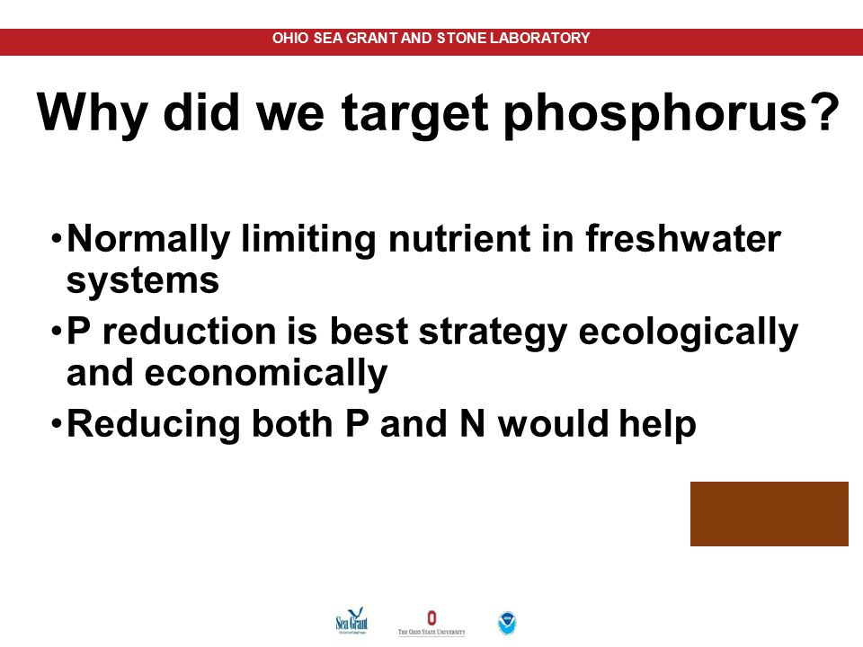 Why did we target phosphorus