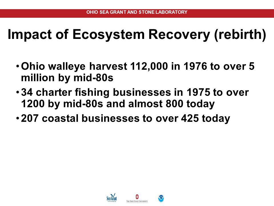 Impact of Ecosystem Recovery (rebirth)