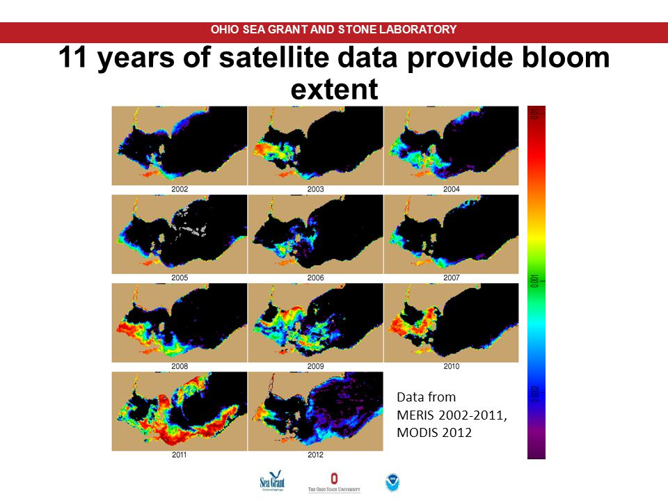11 years of satellite data provide bloom extent