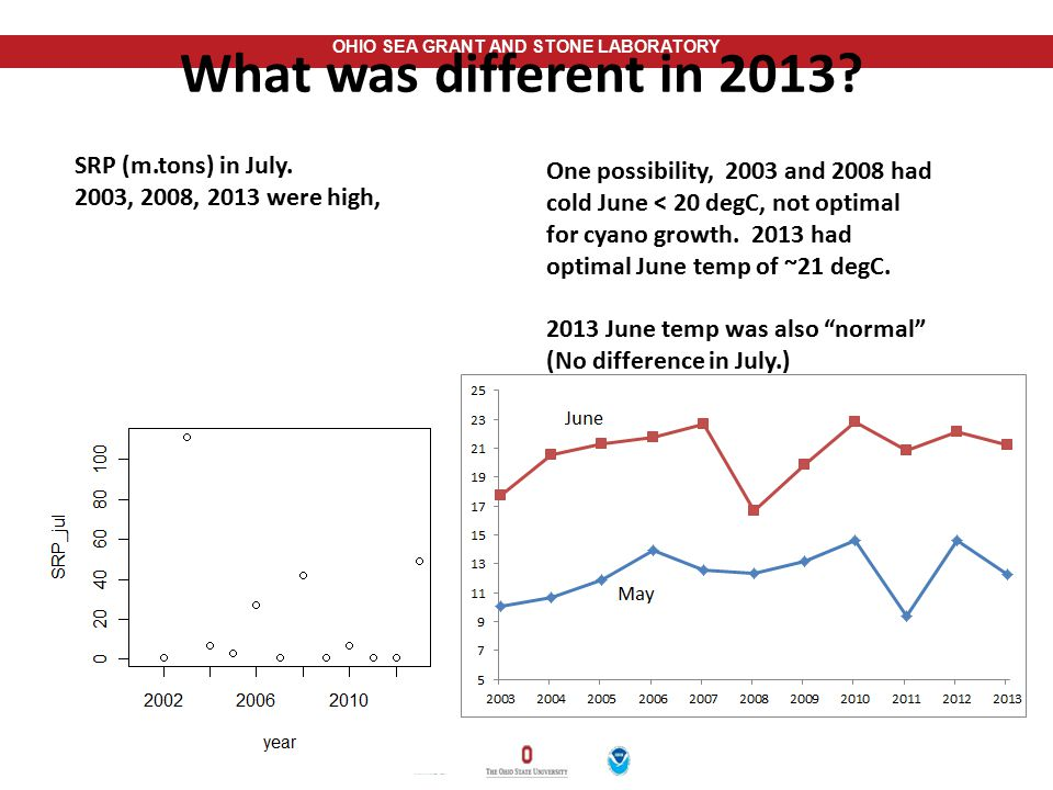 What was different in 2013 SRP (m.tons) in July.