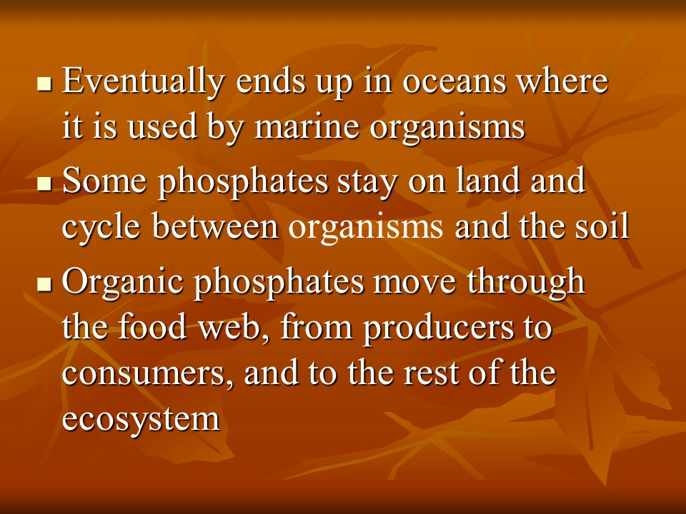 Eventually ends up in oceans where it is used by marine organisms