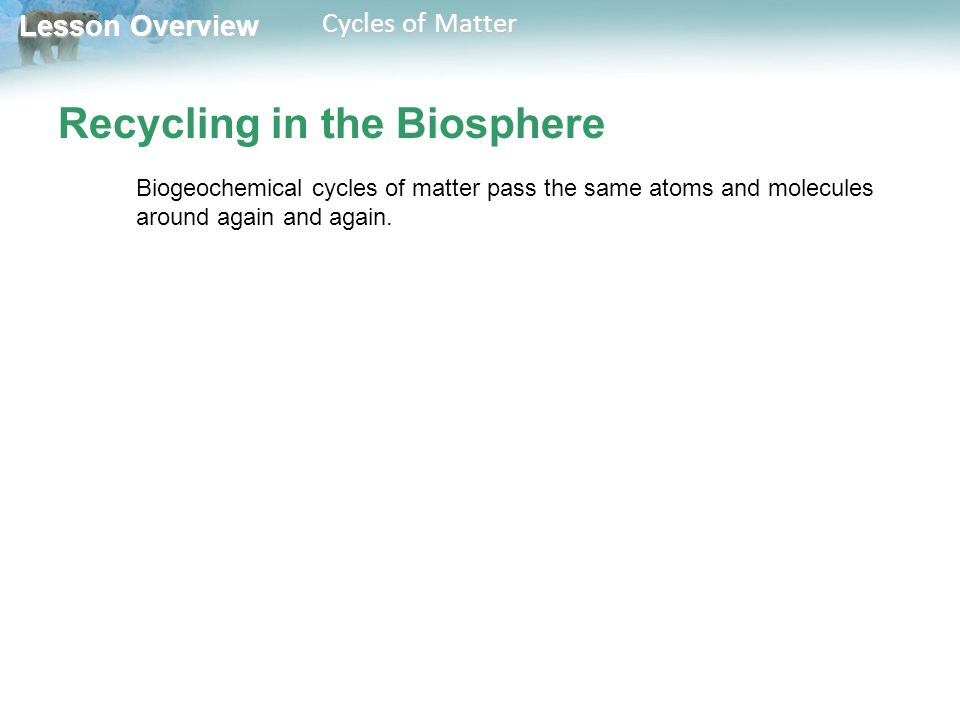 Recycling in the Biosphere