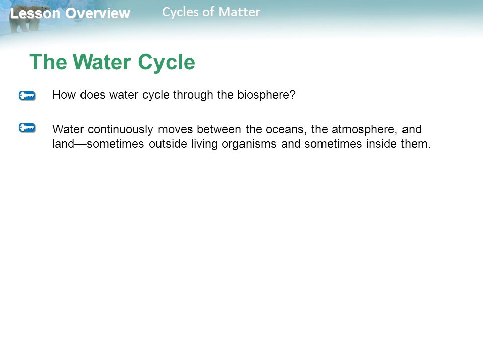 The Water Cycle How does water cycle through the biosphere