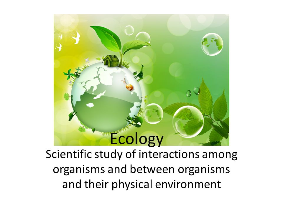 Ecology Scientific study of interactions among organisms and between organisms and their physical environment.