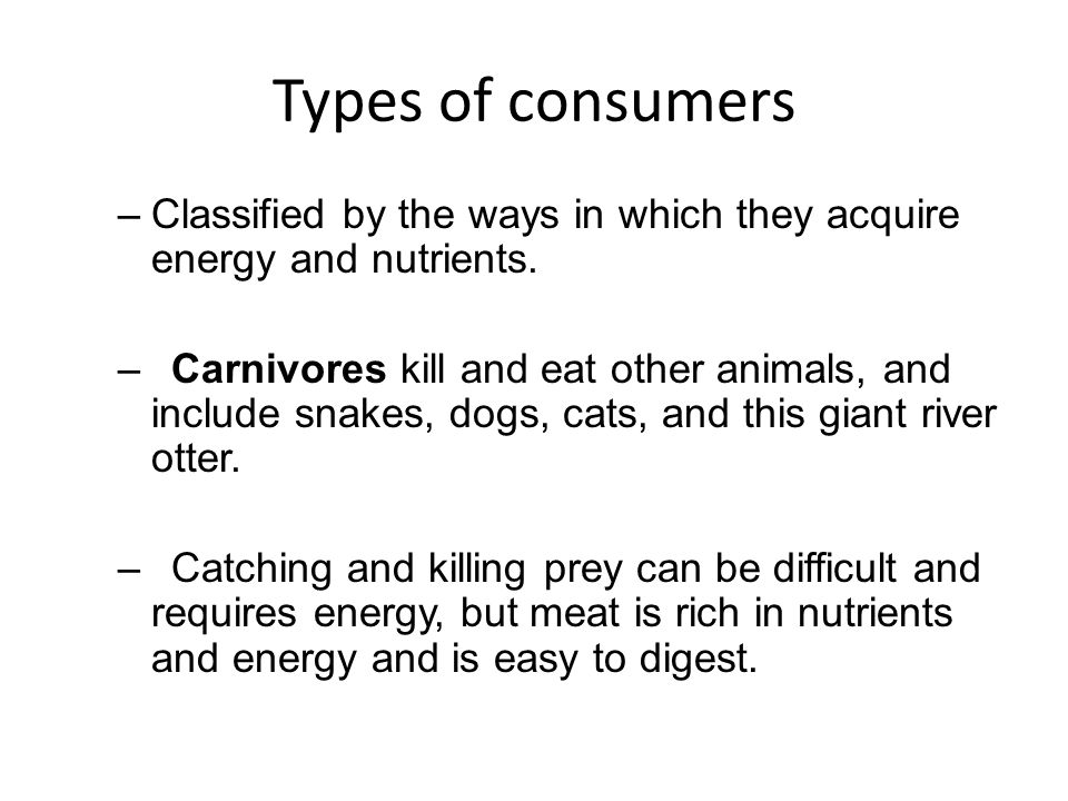 Types of consumers Classified by the ways in which they acquire energy and nutrients.