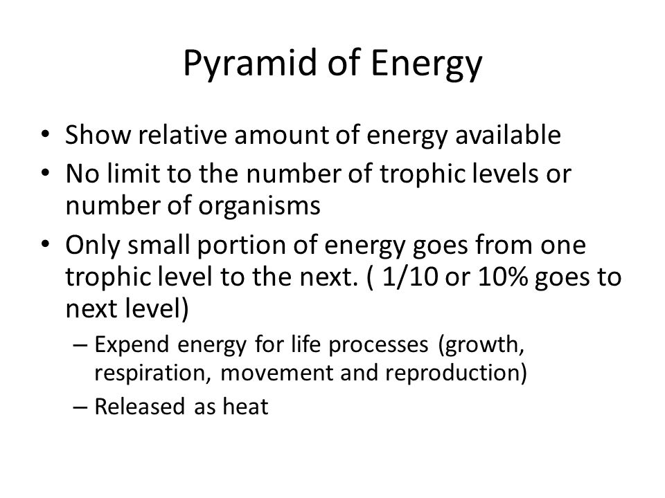 Pyramid of Energy Show relative amount of energy available