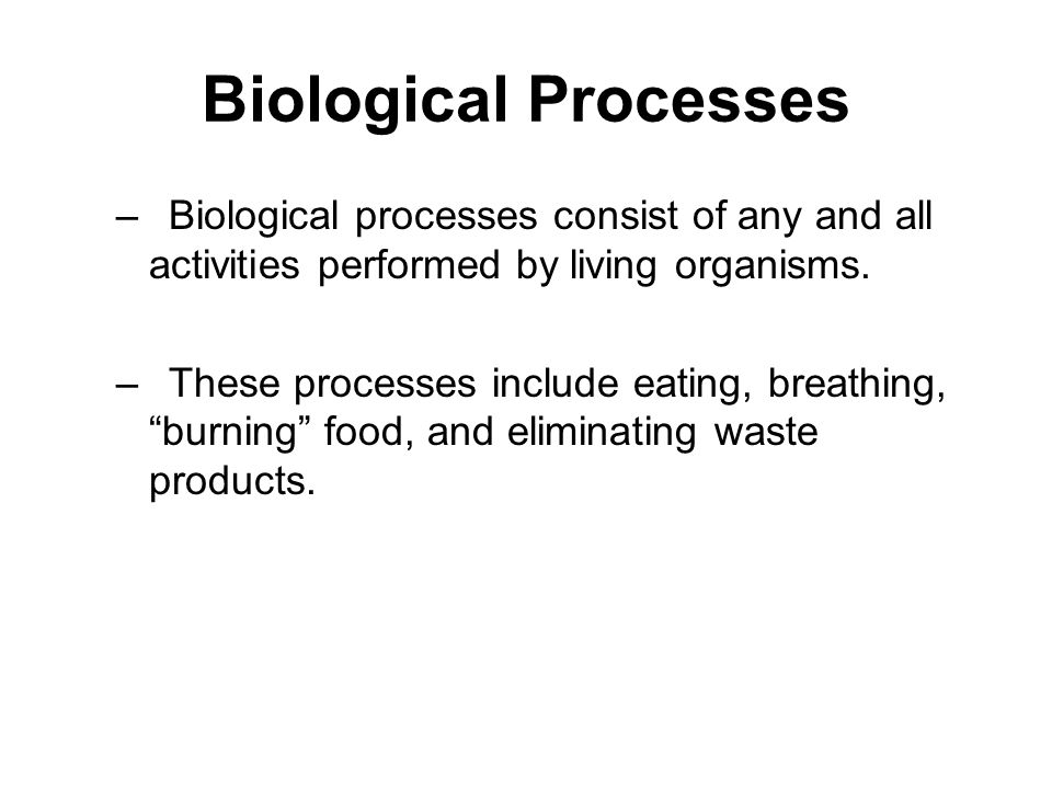 Biological Processes Biological processes consist of any and all activities performed by living organisms.