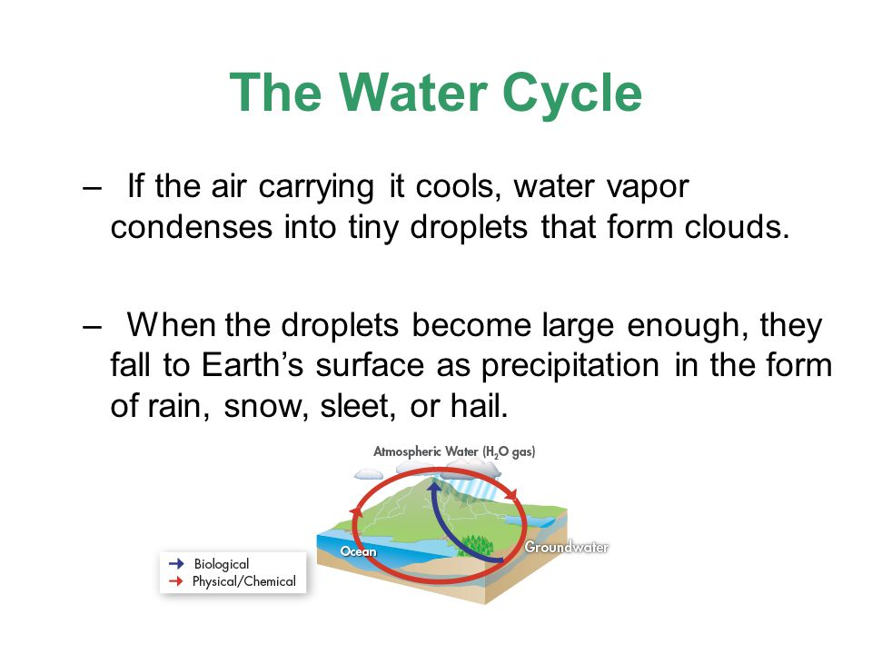 The Water Cycle If the air carrying it cools, water vapor condenses into tiny droplets that form clouds.