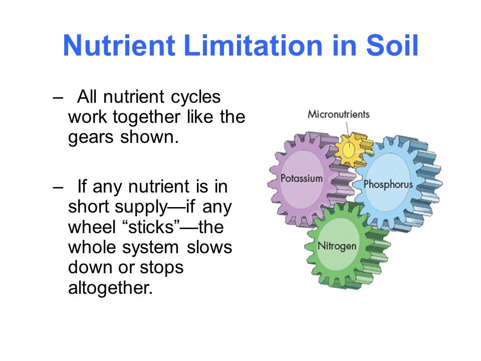 Nutrient Limitation in Soil