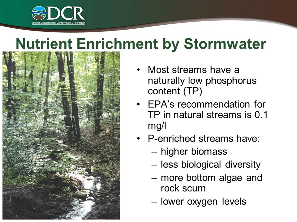Nutrient Enrichment by Stormwater