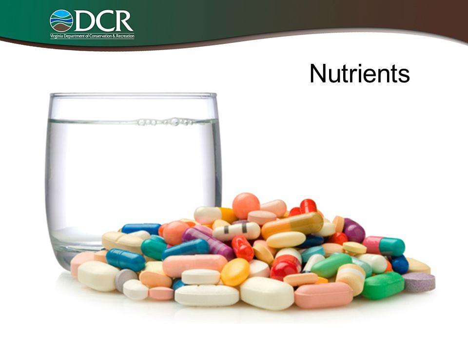 Nutrients Nutrients