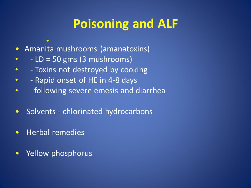 Poisoning and ALF Amanita mushrooms (amanatoxins)