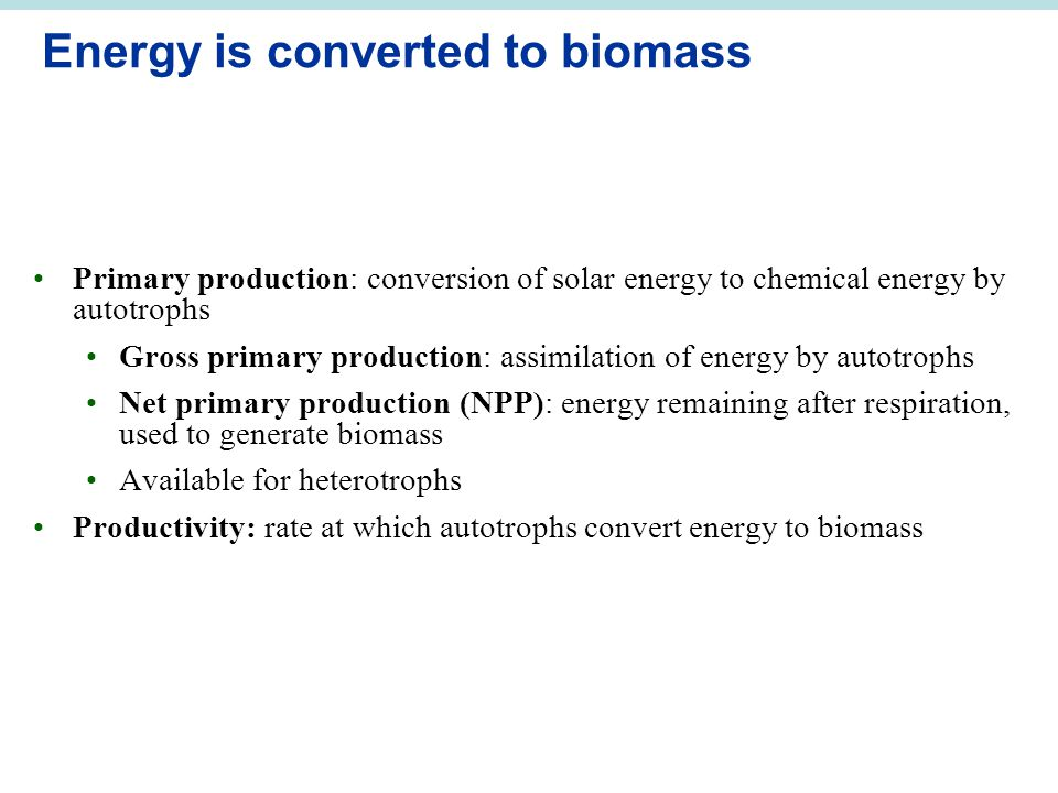 Energy is converted to biomass