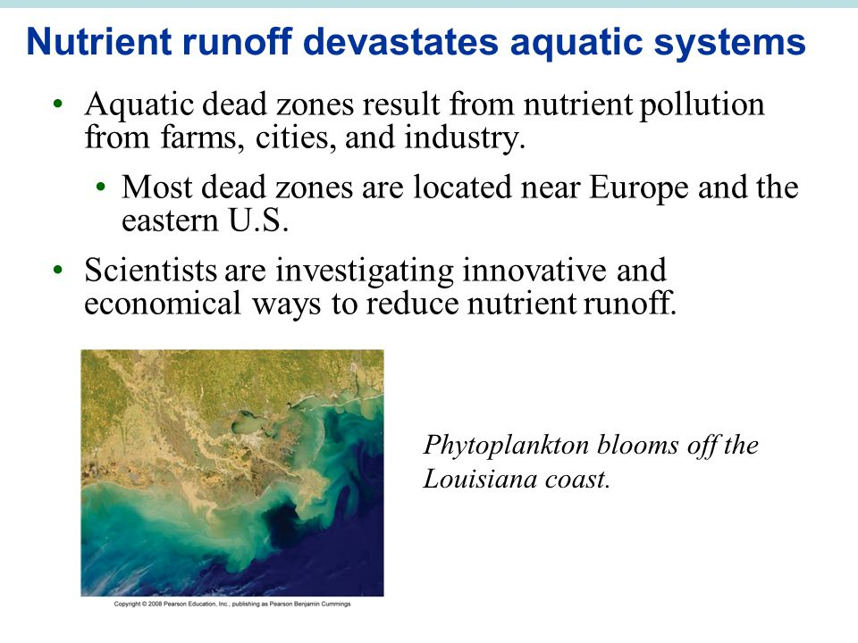 Nutrient runoff devastates aquatic systems