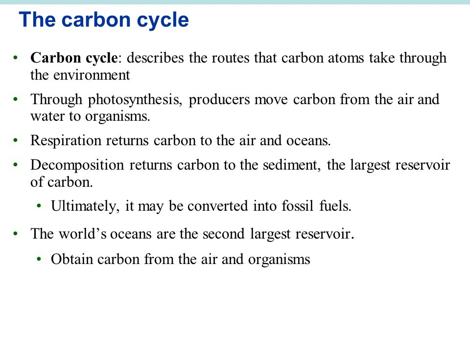 The carbon cycle Carbon cycle: describes the routes that carbon atoms take through the environment.
