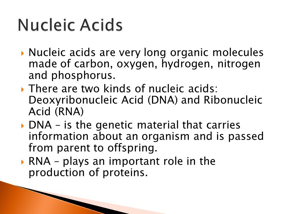 Nucleic Acids Nucleic acids are very long organic molecules made of carbon, oxygen, hydrogen, nitrogen and phosphorus.